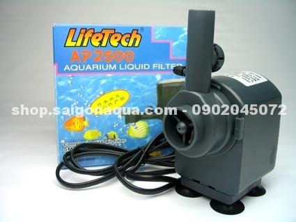 Cửa hàng thủy sinh SaiGon Aqua chuyên cung cấp phụ kiện, cây, cá tép cảnh thủy sinh. - 4
